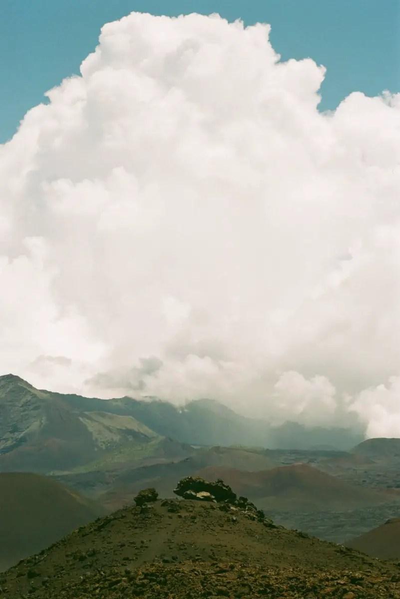 FujiColor C200 / 35mm / EI 100, Nikon F100 + Nikkor 50mm f/1.8 - Bart Patitucci