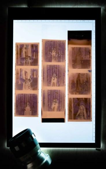 Creating the GX-Pan - Lightbox negatives