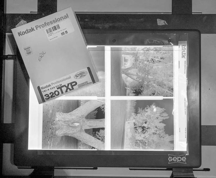 Kodak Tri-X 320TXP and Lightbox