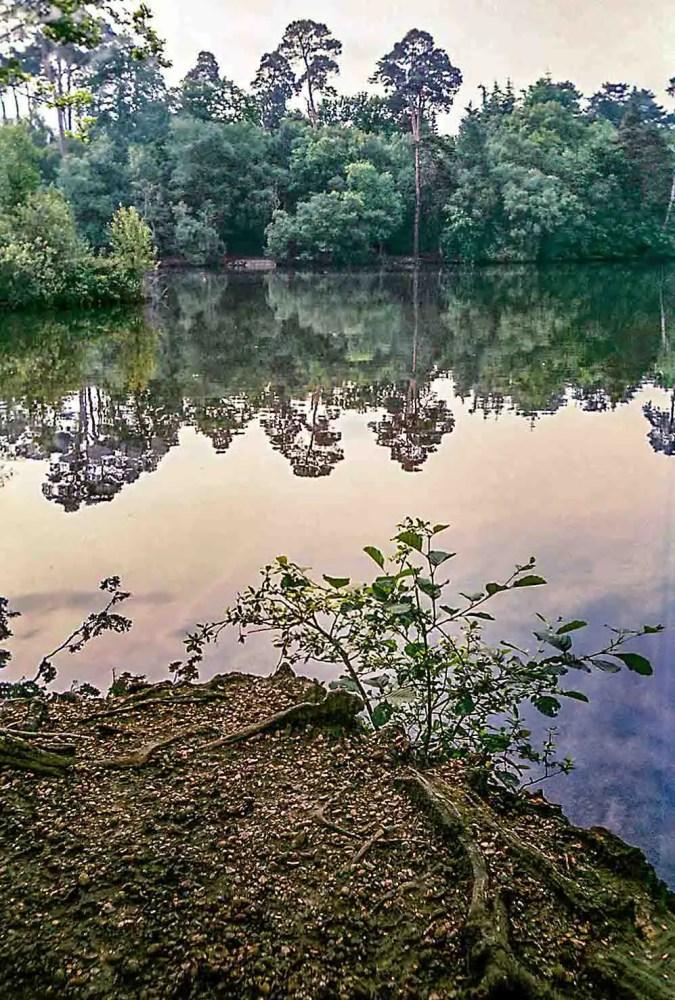 Andrew Clifforth - Blackpark Lake, Slough, UK