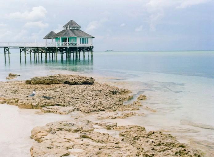 Mamiya 645 Pro TL - Kodak Portra 400 - Andros Bahamas