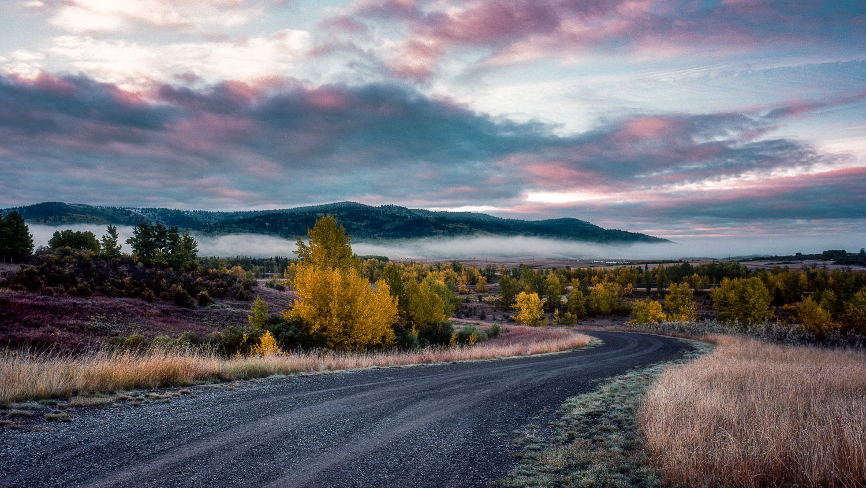 Country Morning Light Show - Kodak Ektar 100