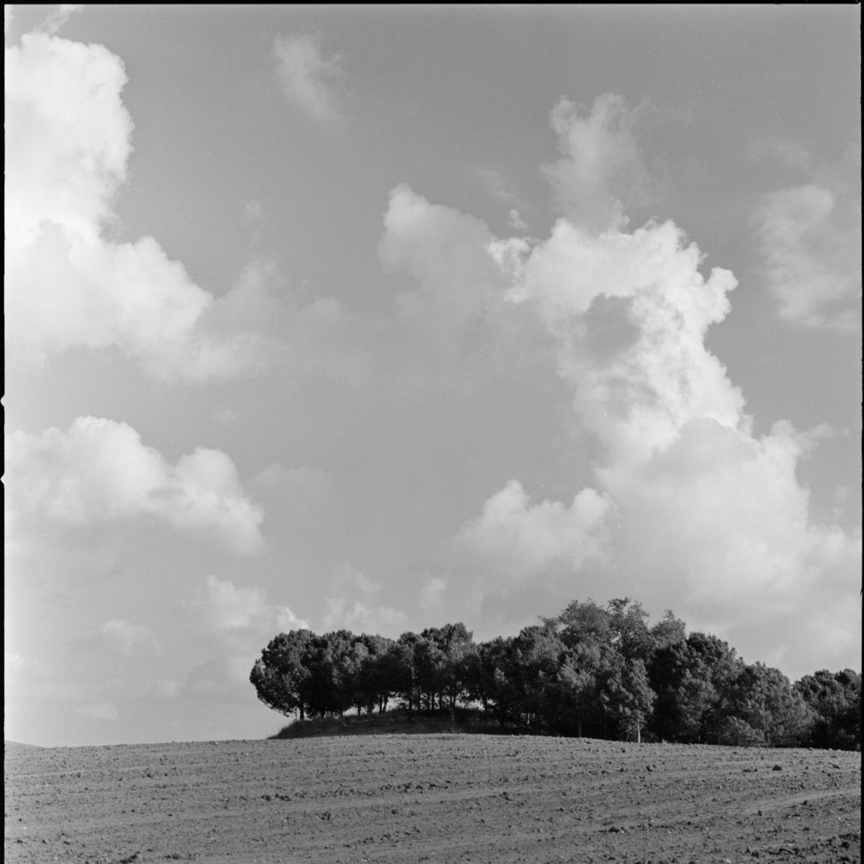 5 Frames With... Kodak Ektar 100 (EI 100 : 120 : Hasselblad 500CM) - by Victor Bezrukov