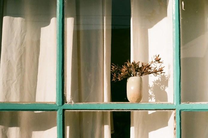 Fujicolor C200 - Window