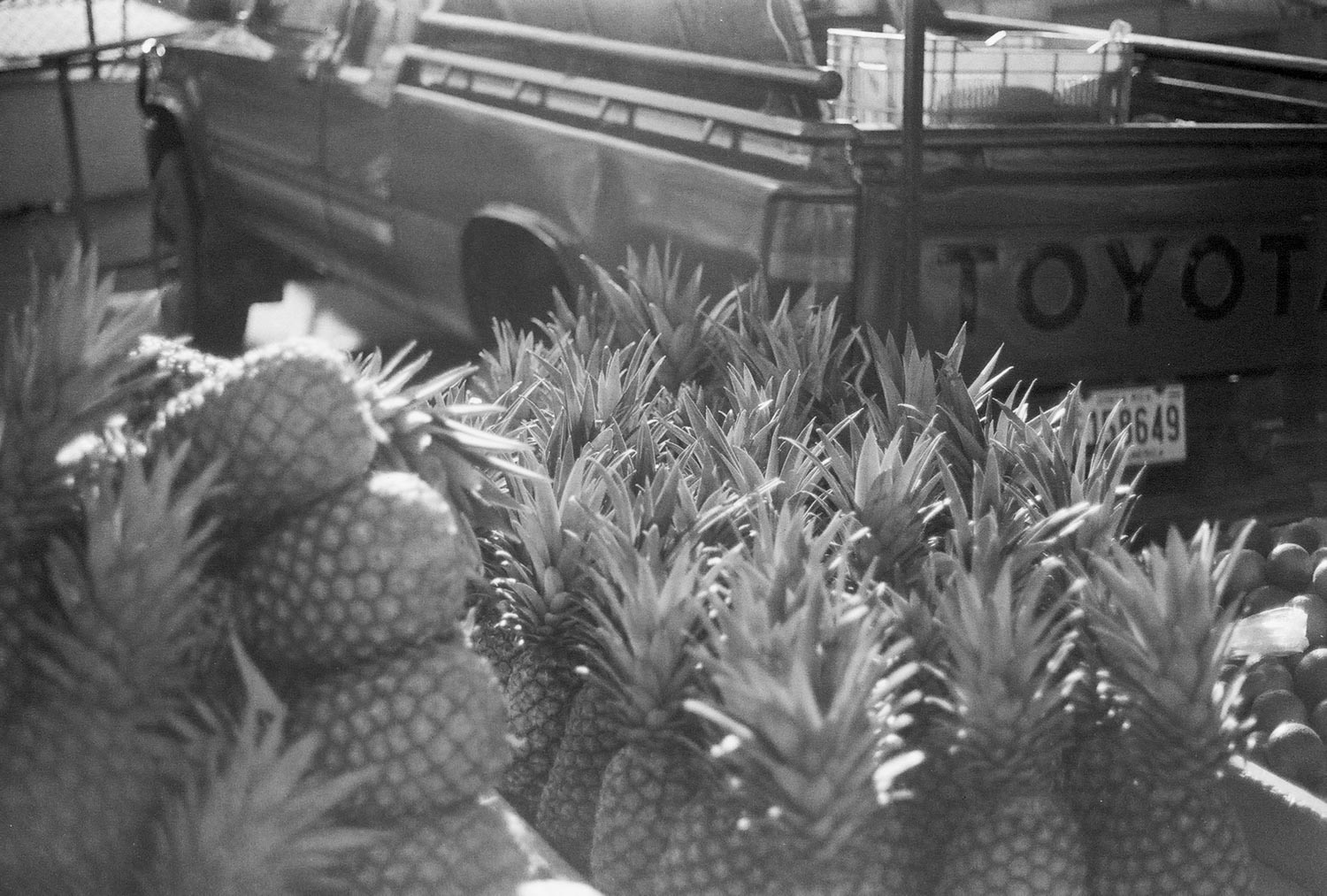 5 Frames With... Fomapan 200 Creative (35mm : EI 200 : Canon A-1) - by Clarence Laboranti