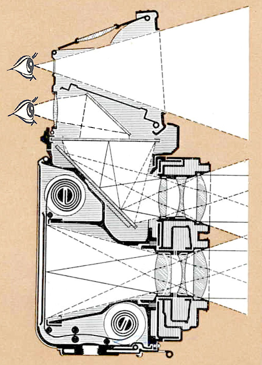 TLR cross-section