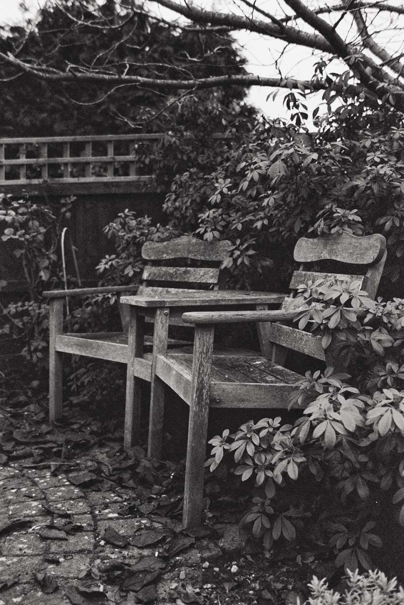 Exposed at EI 125 and push developed as if EI 200