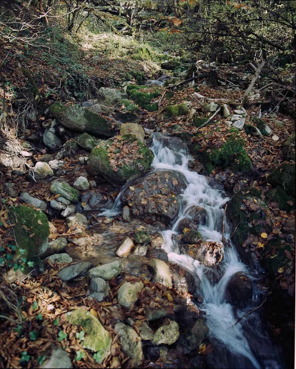 Mamiya RZ69 Pro II + 110mm f/2.8 - Kodak Ektar 100 - Vallée d'Abondance (Haute Savoie)