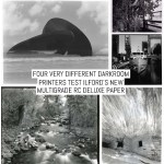 Four very different darkroom printers test ILFORD's new Multigrade RC Deluxe paper