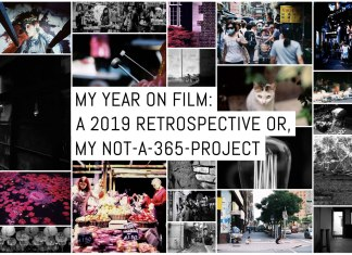 My year on film: A 2019 retrospective or, my not-a-365-project