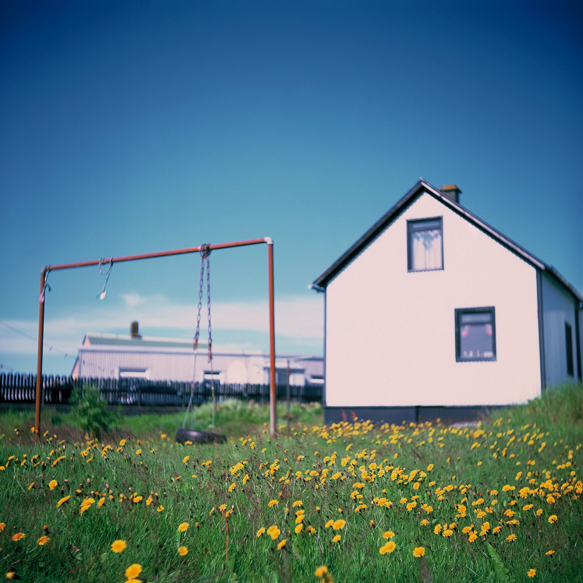 5 Frames With... Fujifilm FUJICHROME Velvia RVP (EI 50 / 120 format / Yashica-635) - by Or Sachs