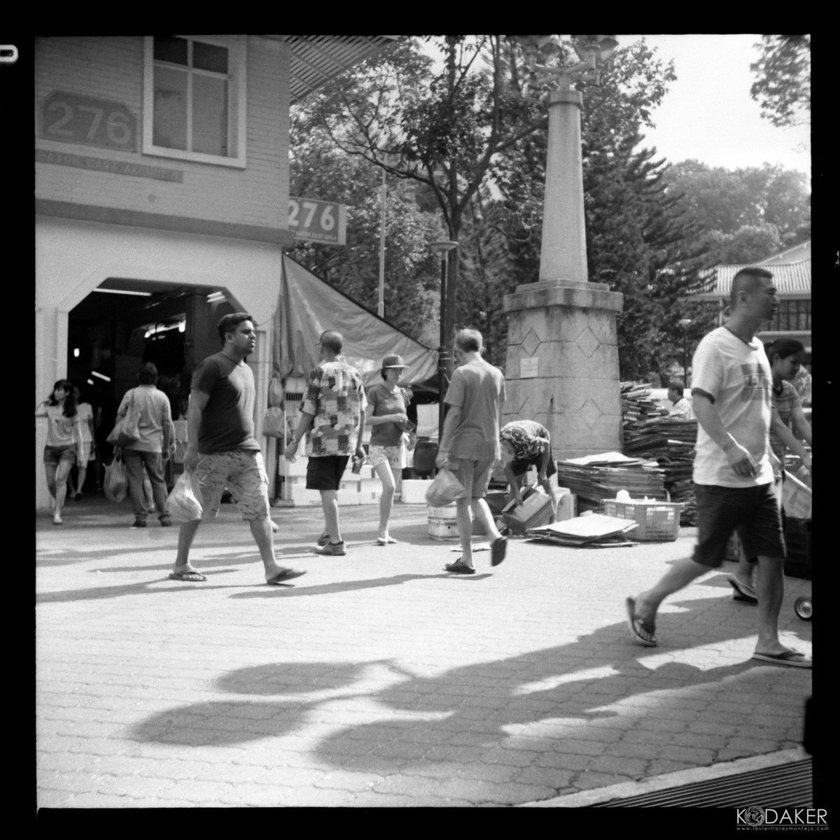 5 Frames With... Fomapan 100 Classic (EI 100 / 120 format / Yashica 635) - by Lester Flores Montejo
