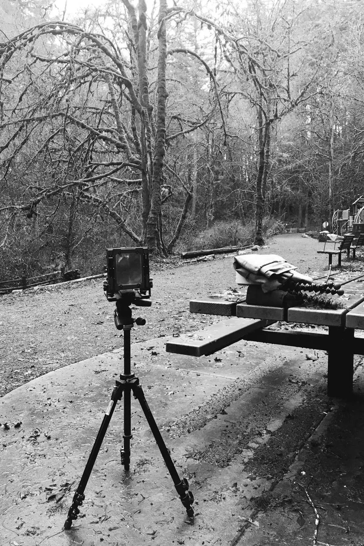 My Chamonix F-2 4x5 camera