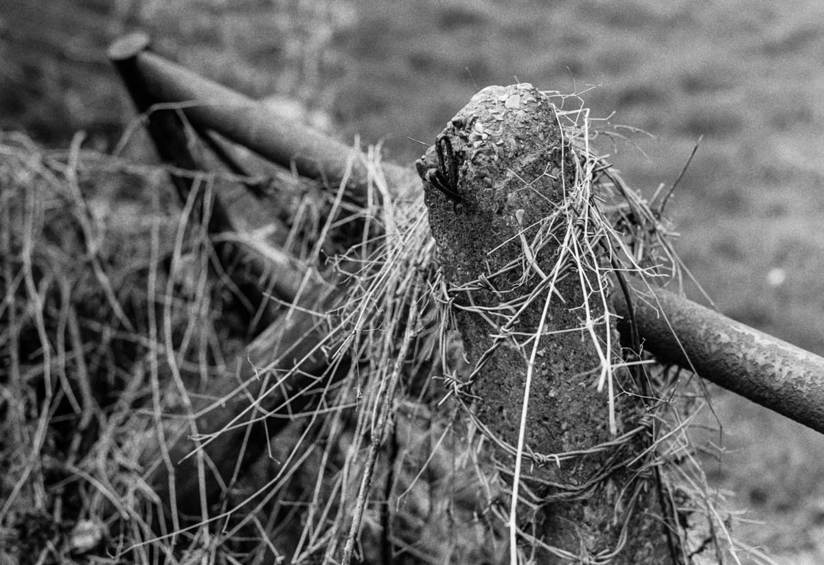 Flood debris - ILFORD HP5 PLUS, Minolta SRT 101b, MD Rokkor 50mm f/1.7 - Nigel Fishwick