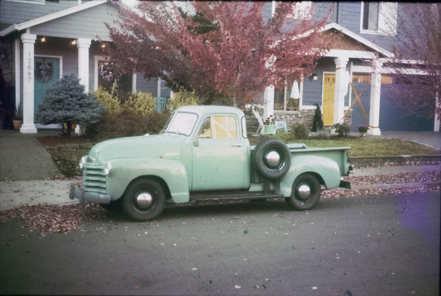 Kodachrome development success - frame