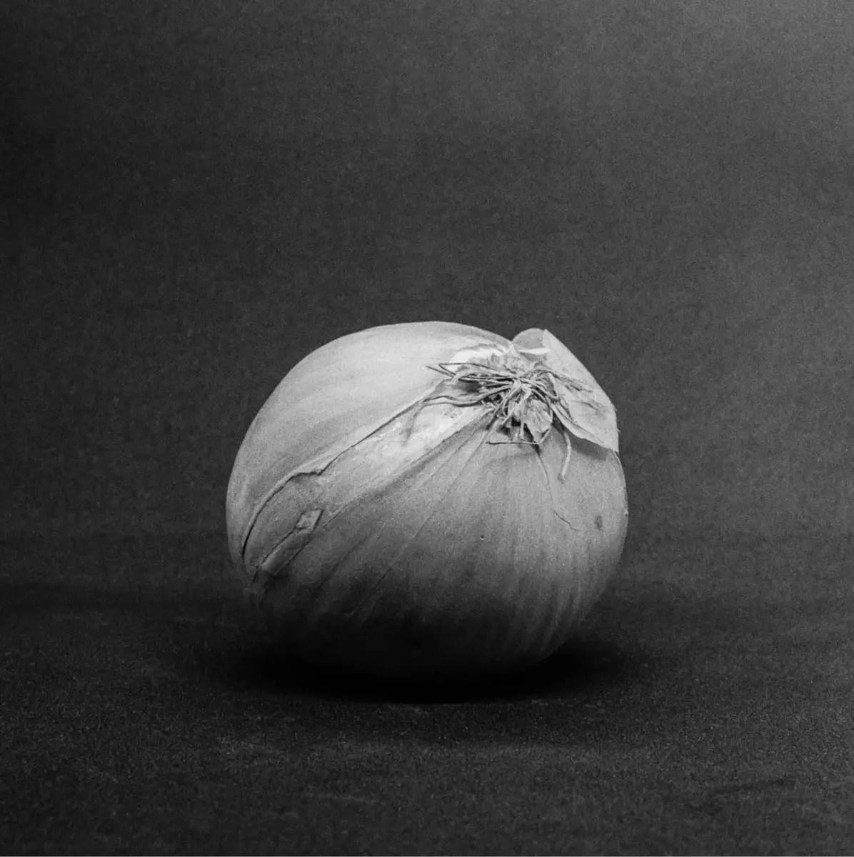 Onion #1 - ILFORD HP5 PLUS, Minolta SRT 101b, MD Rokkor 50mm f/1.7 - Nigel Fishwick