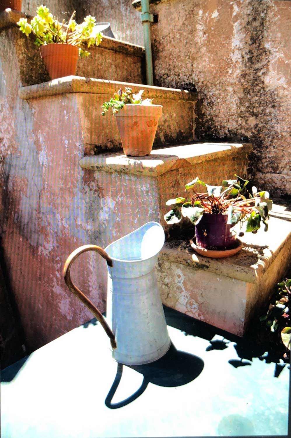 Val de Mossa Pitcher - original digital image in color.