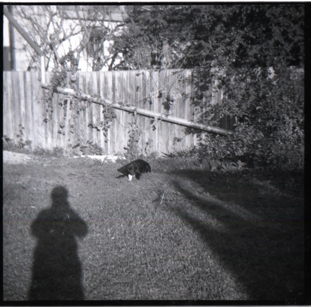 A more conventional double portrait. Melissa with me as shadow-selfie.