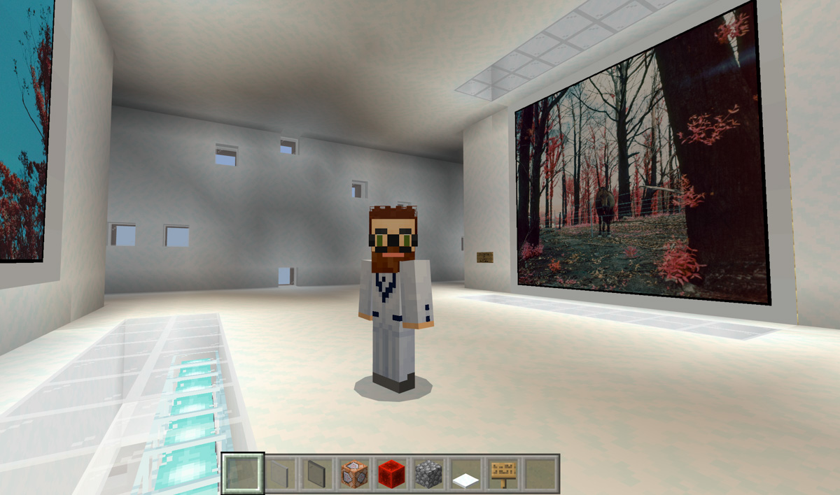In the Minecraft art gallery