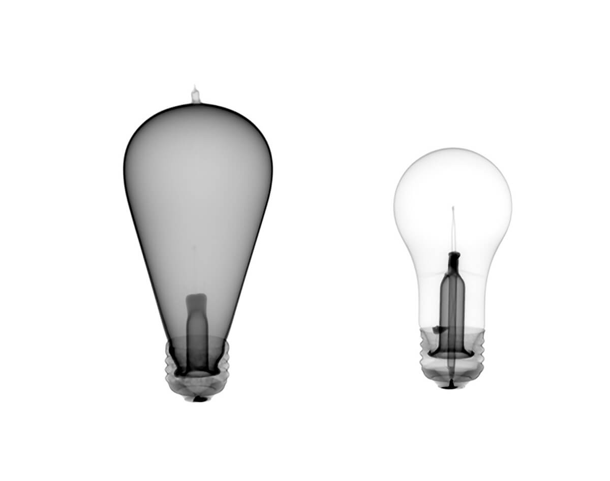 SPECIATION Darkroom and Flash Bulbs
