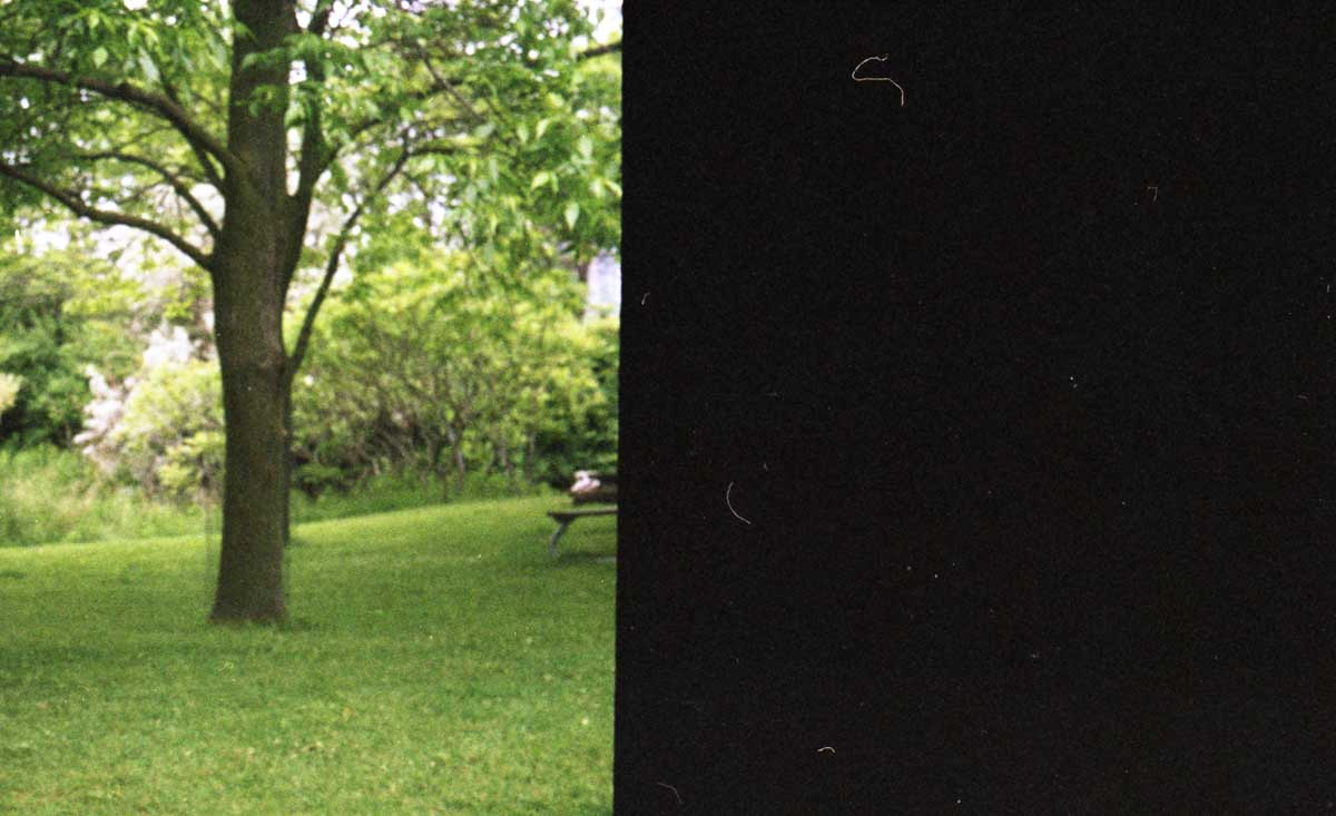 My First Roll... of 35mm film: Fuji Colour 400N and a Zorki 6