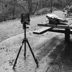 5 Frames With... Kodak Ektar 100 (EI 100 : 4x5 format : Chamonix F-2 4x5) - by Leland Buck