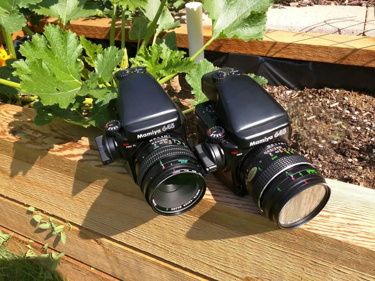 My Mamiya 645 cameras