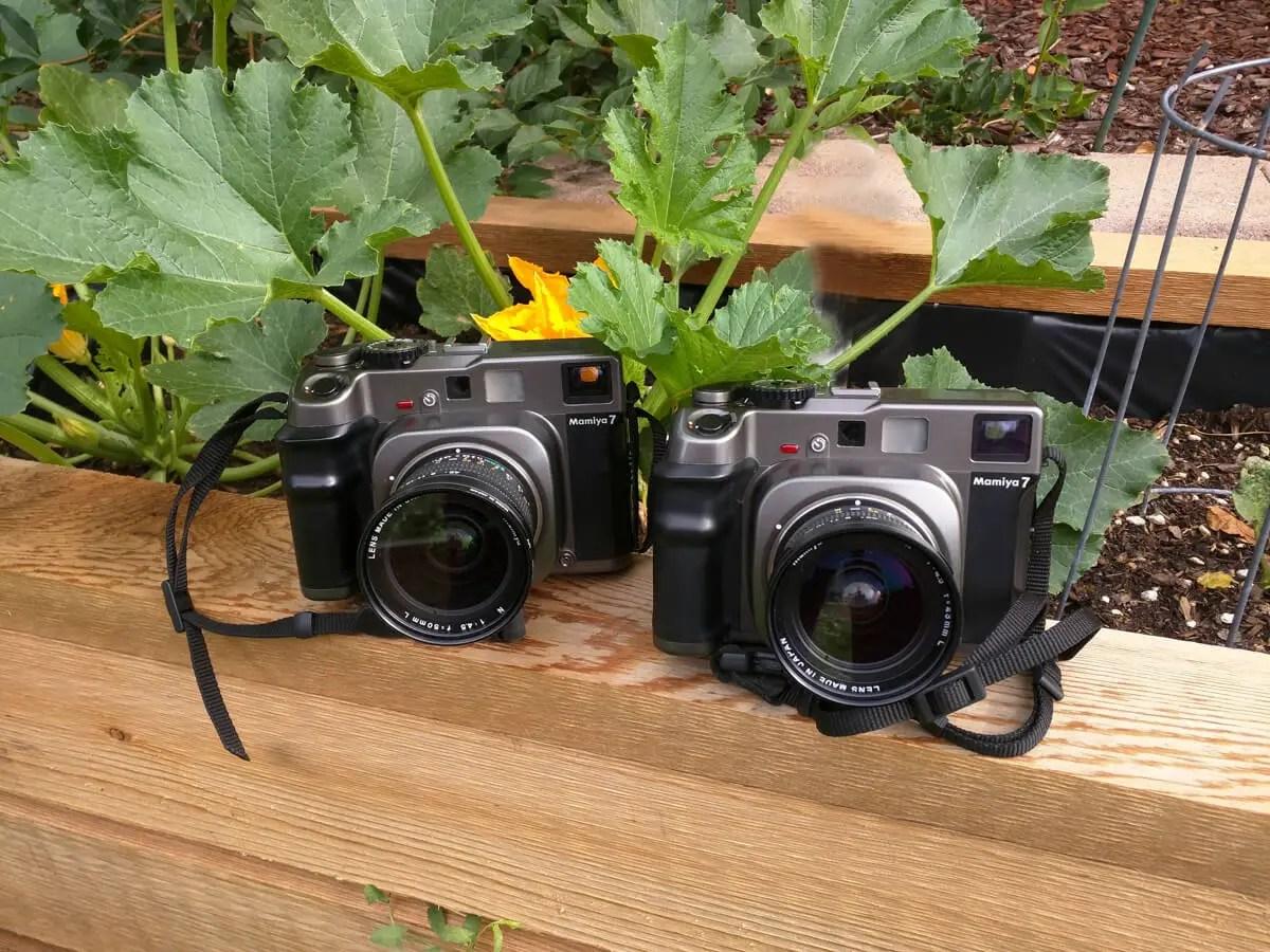 My Mamiya 7 cameras