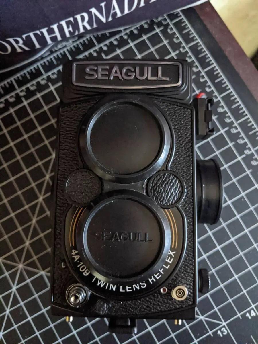 My Seagull 4A-109 TLR, Randy Saint-Louis
