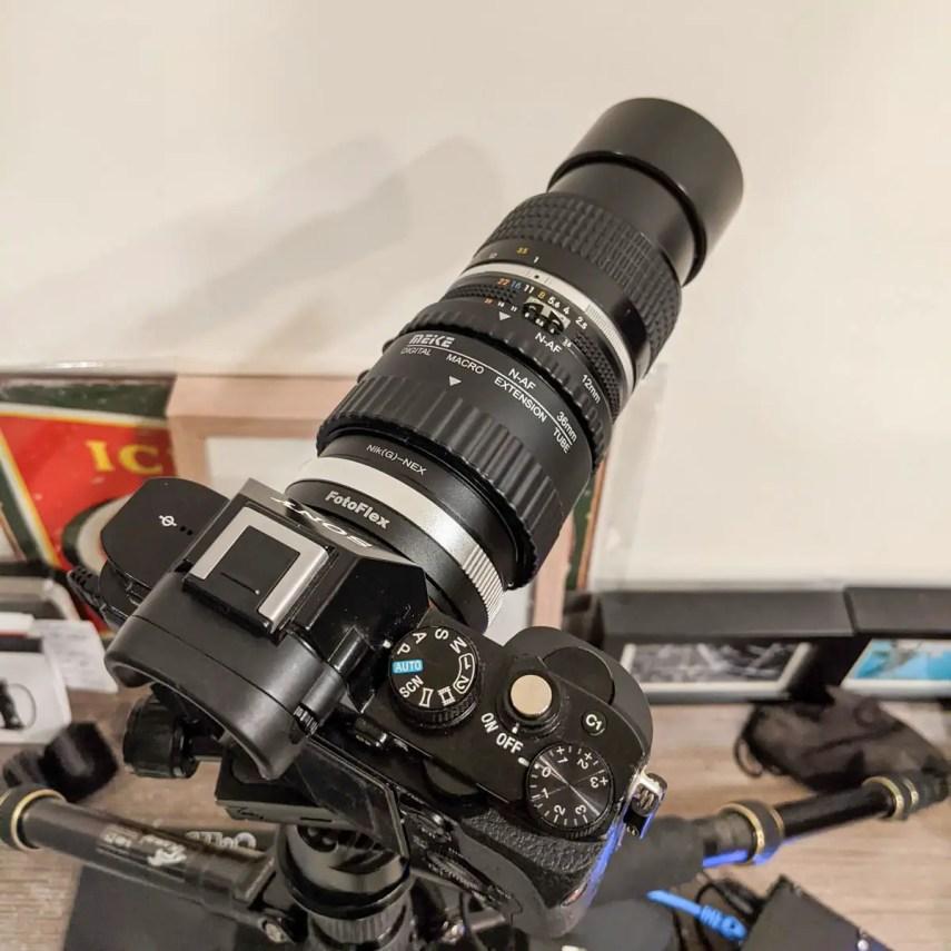 Sony A7 (Gen 1), Nikon Nikkor 105mm f/2.5 AI-s + MEIKE AF extension tubes