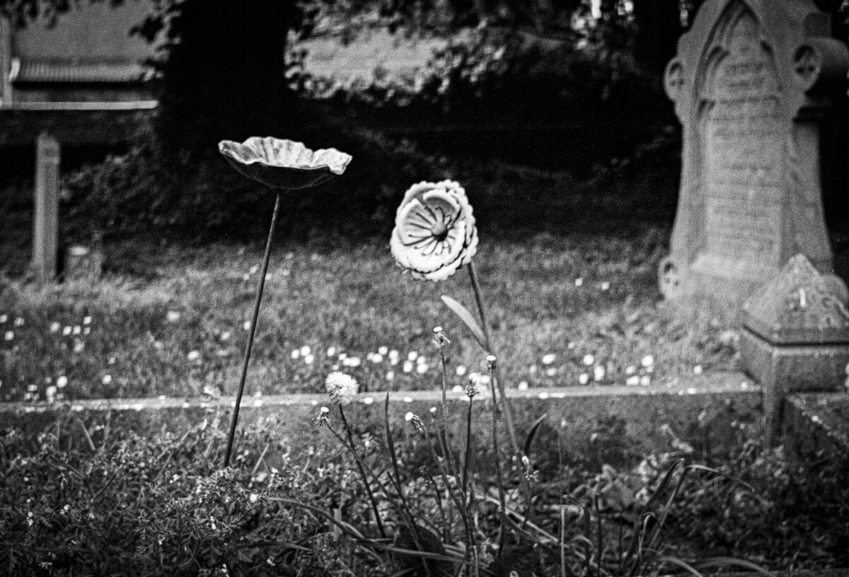 5 Frames with a forgotten Olympus Trip 35 on ILFORD XP2 Super (35mm Format / EI 200) - by Brian Etherington