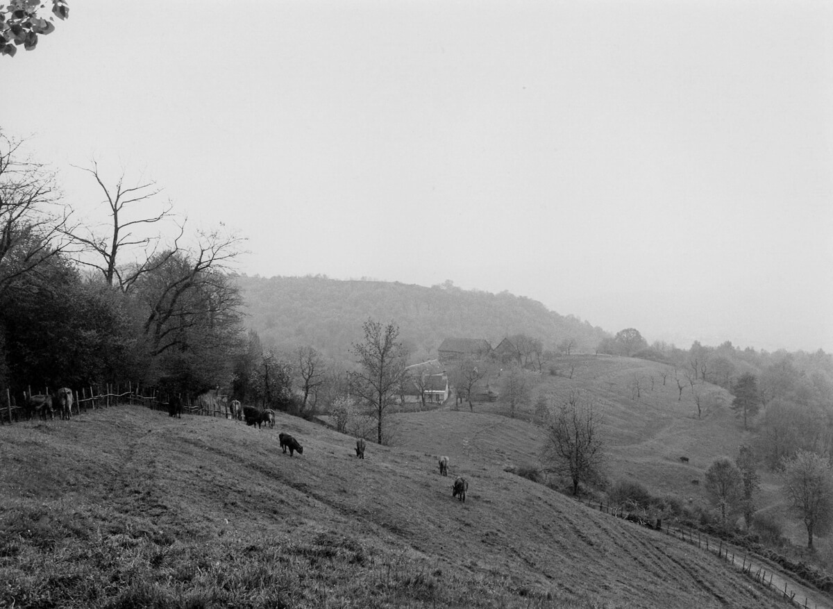 1980 - Misty valley near Lescurotte