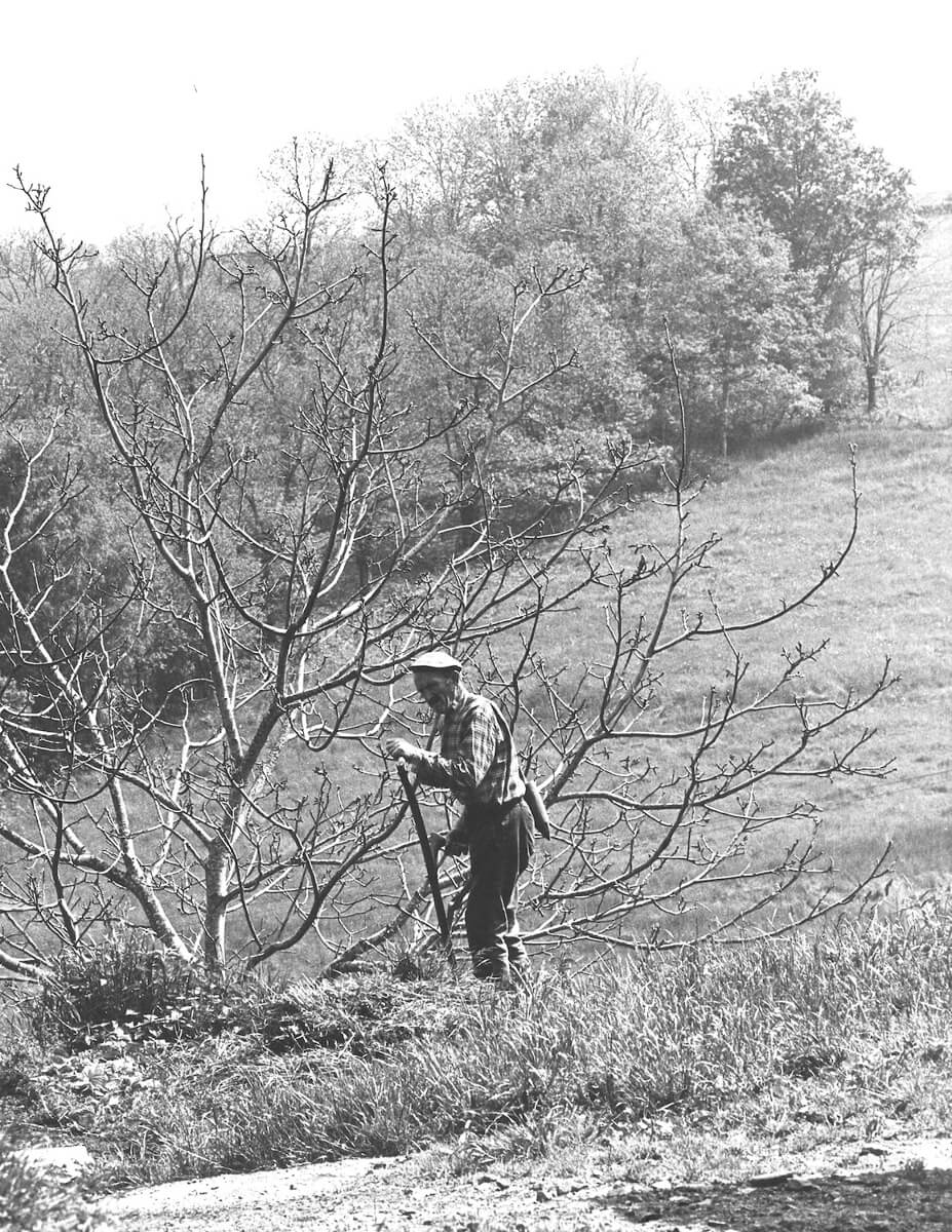 1980 - Pépé (grandfather) with his scyth