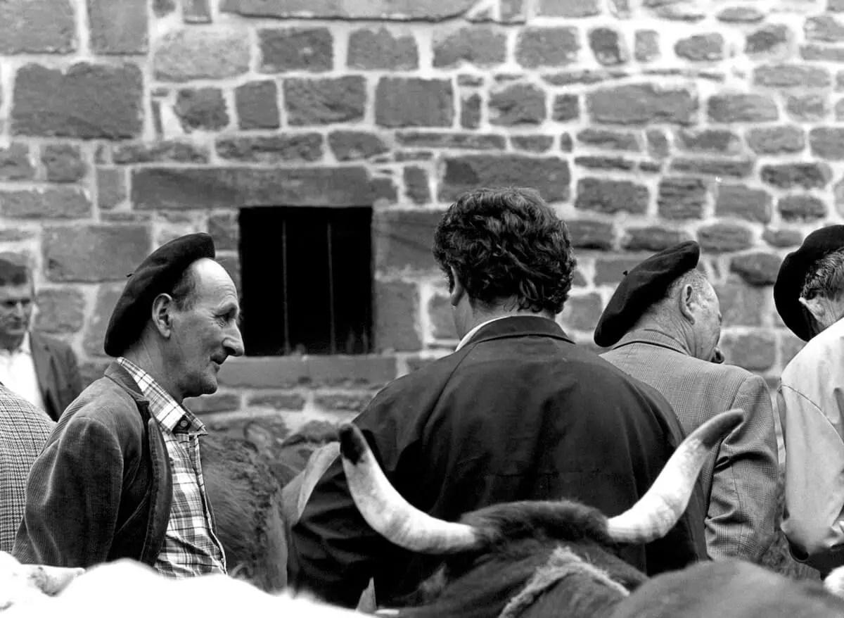 1981 - Cattle market Meyssac