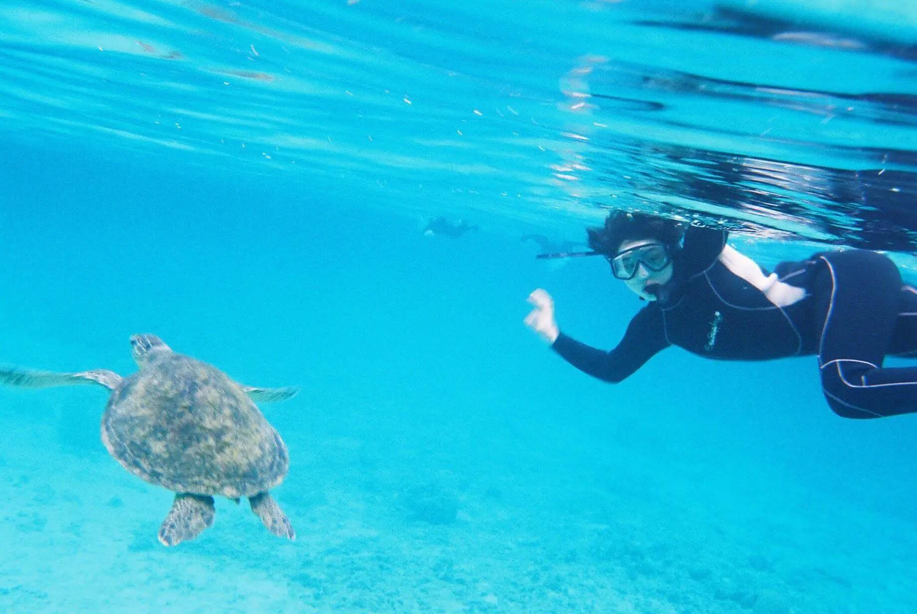 The Nikonos V snorkelling in Amami, Japan