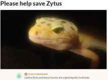 Please help save Zytus