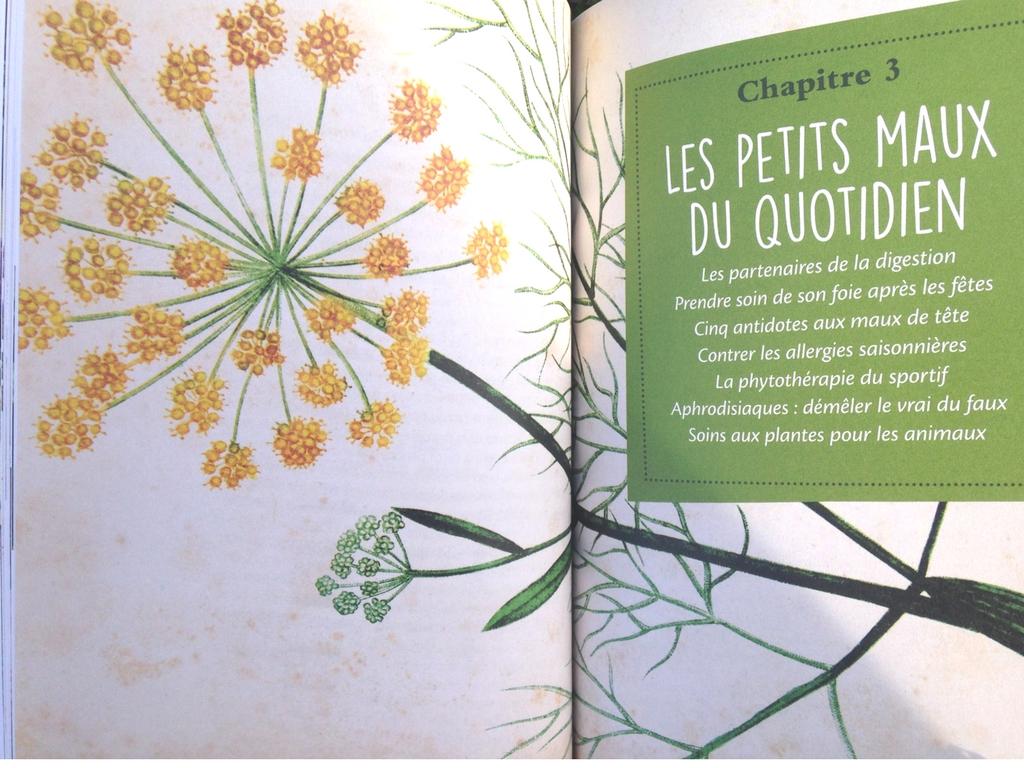 Se soigner avec les plantes, le guide familial aux éditions Terre Vivante