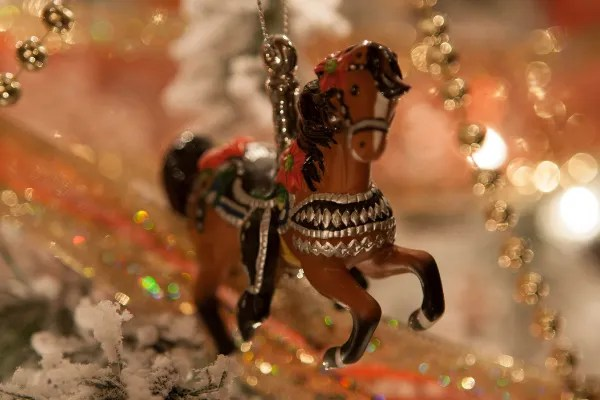 Happy Christmas to all our equine friends and equine loving friends
