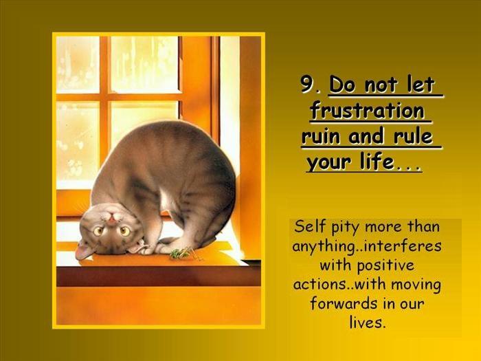 10 life tips