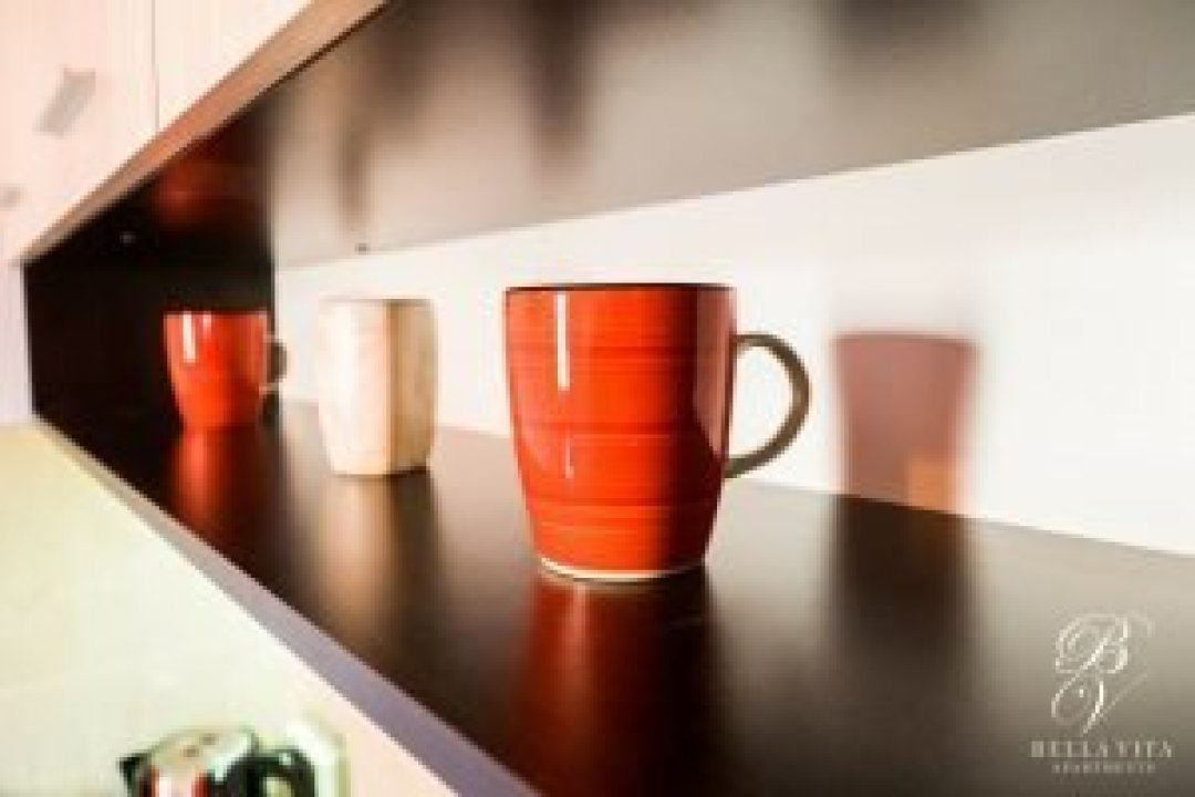Short Term Apartment for Rent Blagoevgrad Bulgaria Italian Style Coffee Mugs