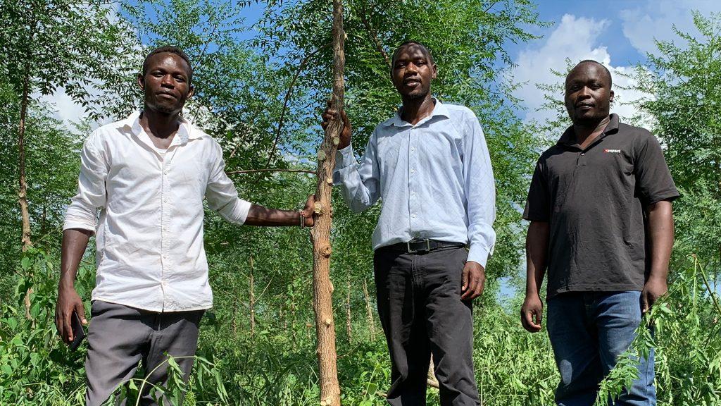 Wallace, Herman och Juma, förmännen på Nyongoro-plantagen. Foto: Torgny Johnsson