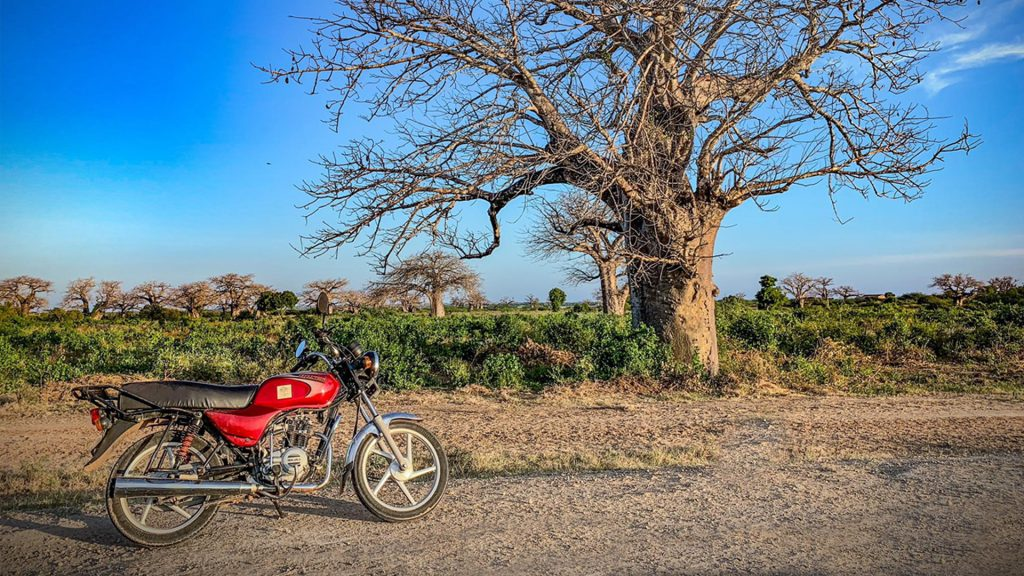 The rented motorcycle that took me to Nyongoro. Photo: Torgny Johnsson.