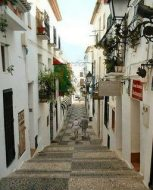 Altea, first zone in the community of Valencia free of transgenic