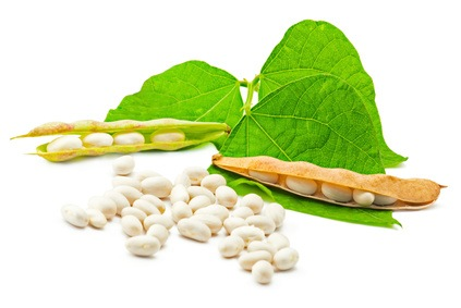 Soy lecithin for brain, heart and obesity