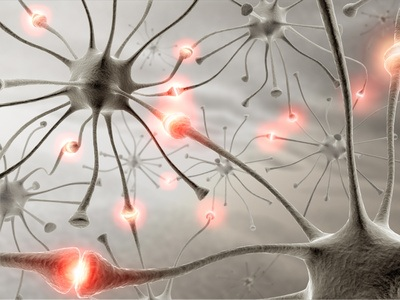 Myelin: can be regenerated?