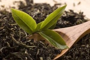 Pu-erh red tea ... Preparation, Origin and History
