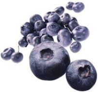 Cooking with blueberries. Freshness and rejuvenation in your table