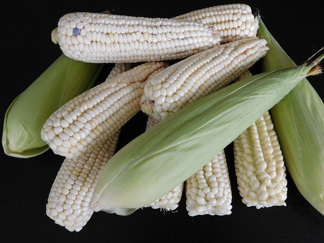 Recipes with Corn
