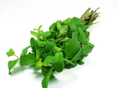Recipes Peppermint (Hierbabuena)