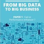 "Big Data white paper: ""From Big Data to Big Busine$$"" – free"
